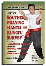 Hakka Southern Praying Mantis Kungfu