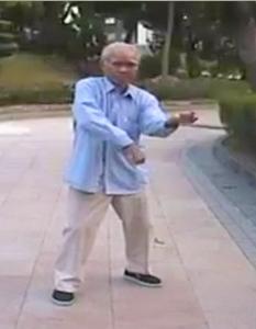 Hakka Chu Gar Mantis Kungfu Courses