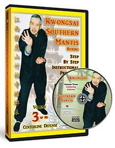 Hakka Southern Praying Mantis Online Courses
