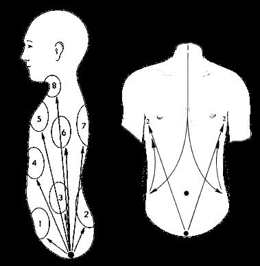 Qigong Internal Work